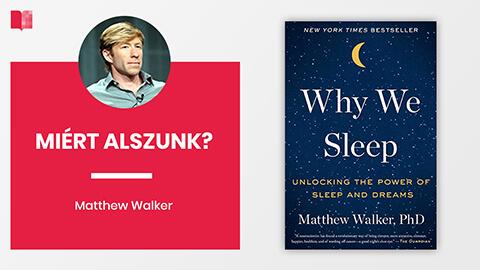 Miért alszunk?